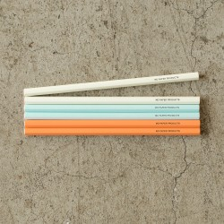 Midori MD Paper Colour Pencils