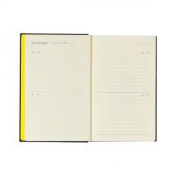 Midori 10 Years Diary